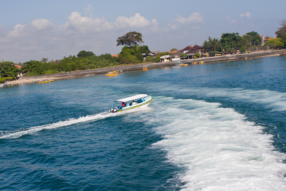 巴厘岛  摄影 虚化